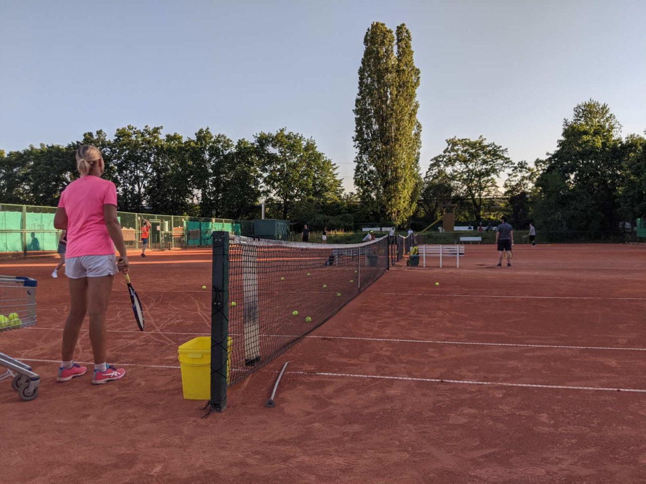 Newcomer Training